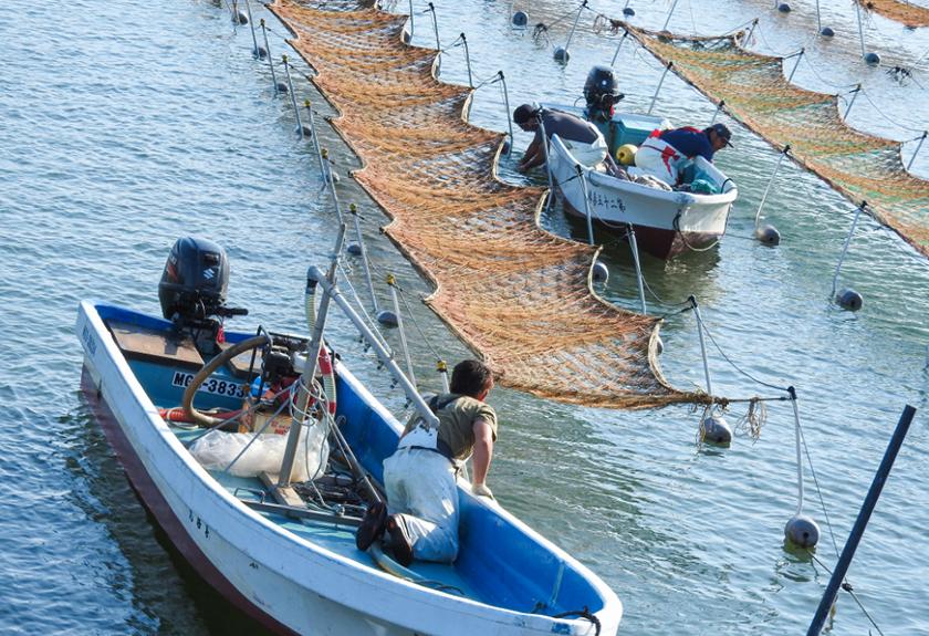 相澤さんの海苔漁の様子