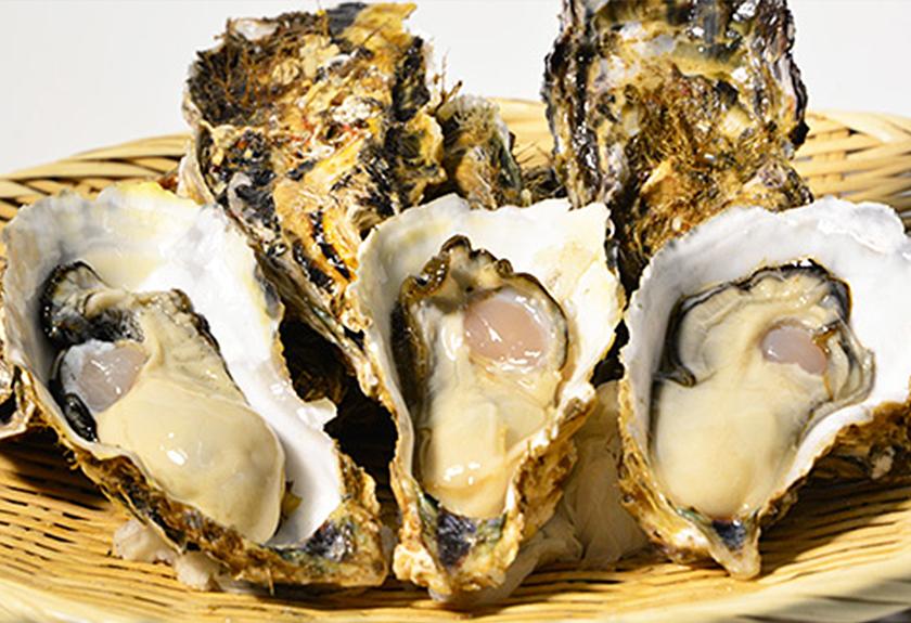 奥松島の牡蠣