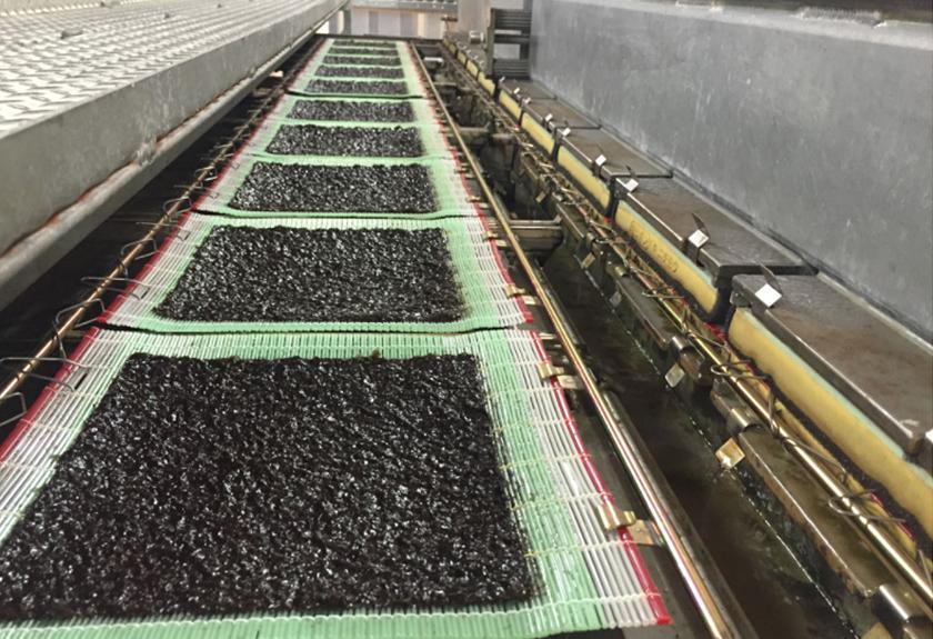 海苔の生産の様子
